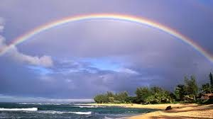 Optimism is your ability to see and appreciate the rainbow in your life